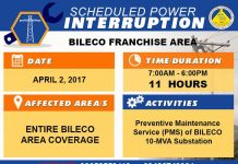 BILECO Power Advisory